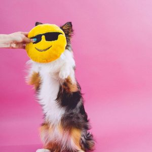 Dog Smiling Sunglasses Plush Toy