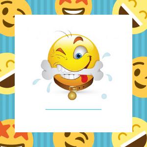 Emoji Pet Toys